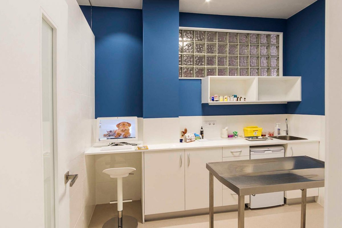diseño consultas clinica veterinaria Pontevedra