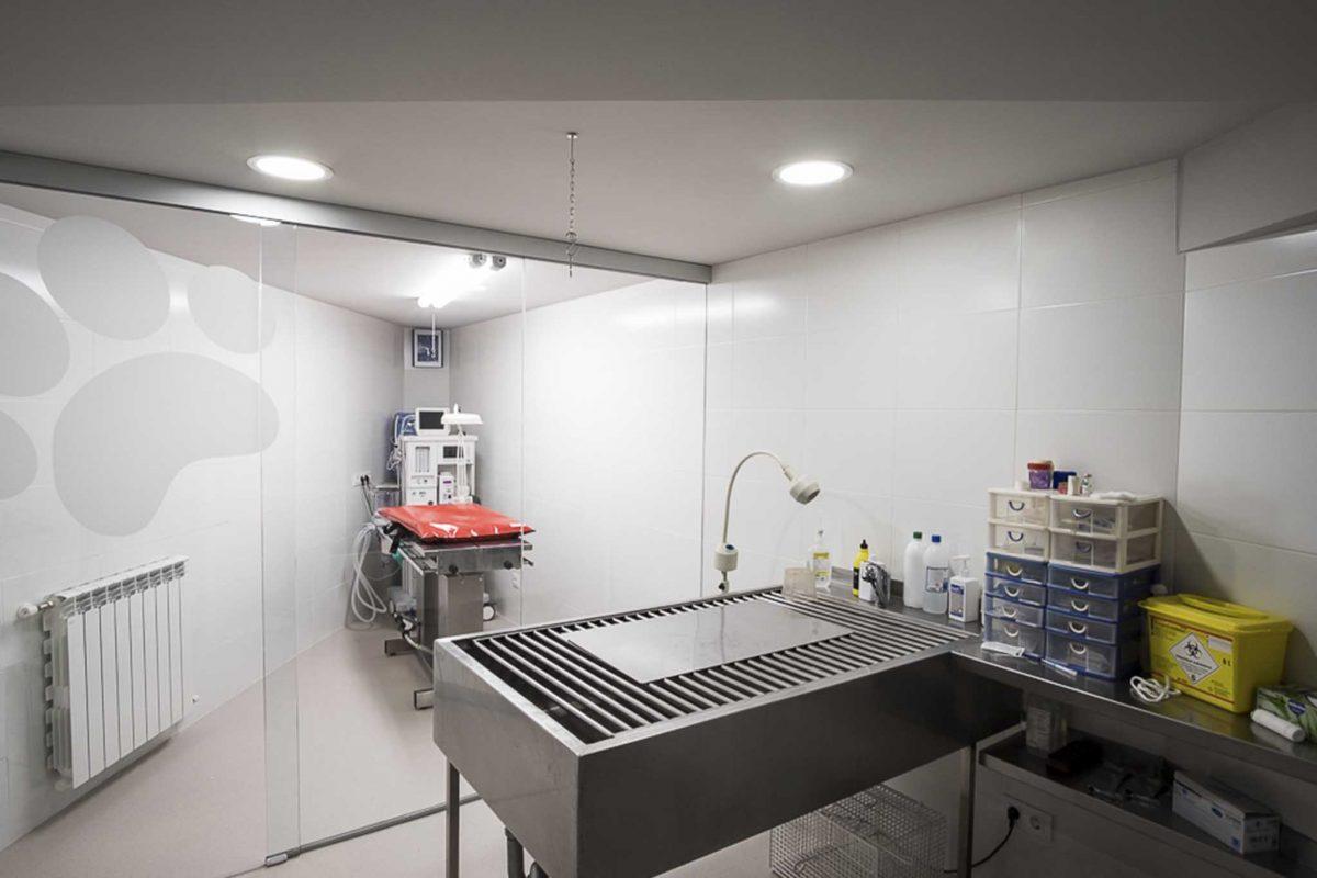 clínica veterinaria Ponteareas Pontevedra